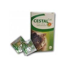 CESTAL CAT